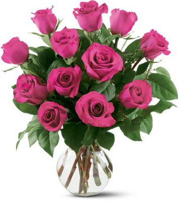 12 Hot Pink Roses from Forever Flowers, flower delivery in St. Thomas, VI