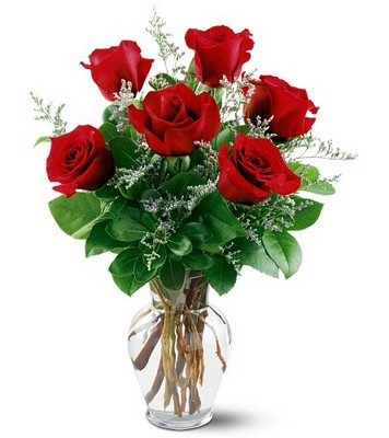6 Red Roses from Forever Flowers, flower delivery in St. Thomas, VI