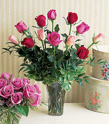 A Dozen Multi-colored Roses from Forever Flowers, flower delivery in St. Thomas, VI